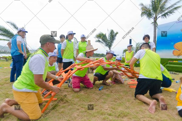 Tổ chức team building flamingo Đại Lải